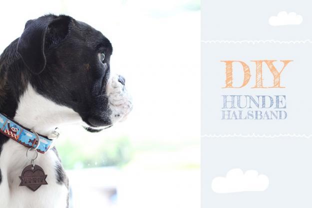 Nähen für den Tierschutz DIY-Hundehalsband1