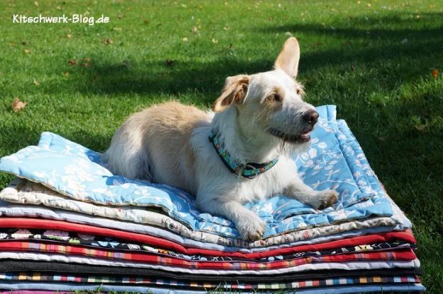 Nähen für den Tierschutz Decken 1
