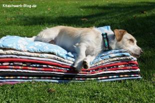 Nähen für den Tierschutz Decken 3